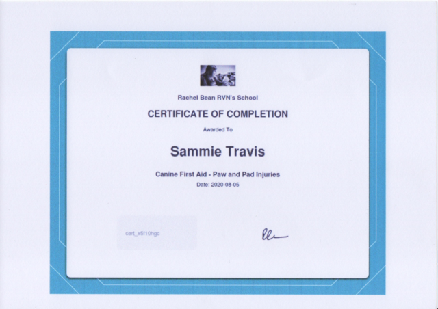 Sammie Travis Canine First Aid - Paws & Pad Injuries