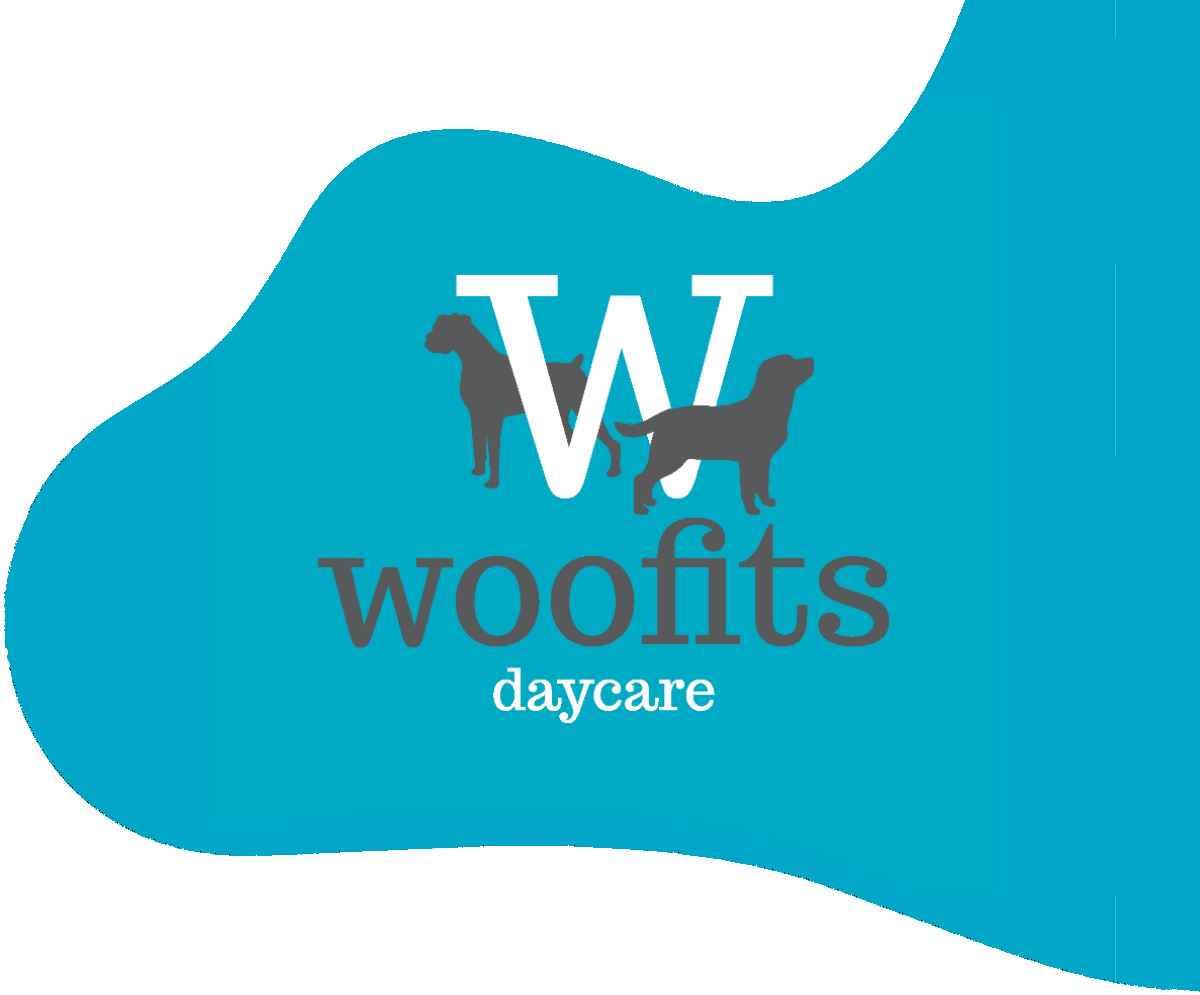 Woofits Doggy Day Care